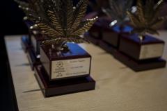premios_viernes18_8_20180315_1911073869