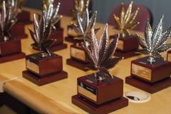 Viernes_premios_marzo9_011